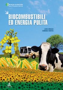 Biocombustibili ed energia pulita